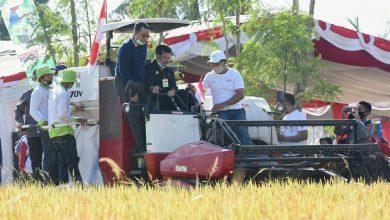 Photo of Gubernur : Inovasi Teknologi dan Industrialisasi, Tingkatkan Produktivitas Pertanian