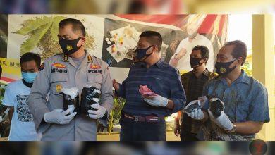 """Photo of Ditresnarkoba Polda NTB Gunakan UU TPPU untuk Memiskinkan """"Penjahat"""" Narkoba"""