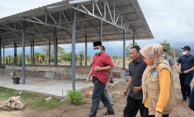 Gubernur Ingin Labangka jadi Kawasan Pengembangan Pangan Terintegrasi   Talikanews.com