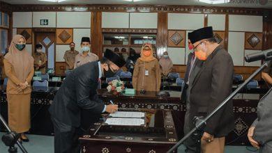 Photo of Pemprov NTB Ambil Pejabat Bidang Perdata dan TUN Kejati Pegang Jabatan Kabag Bantuan Hukum dan HAM