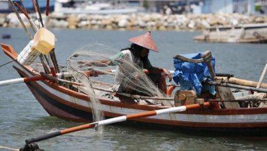 Photo of KKP Pastikan UU Cipta Kerja Prioritaskan Nelayan Kecil dan Masyarakat Pesisir