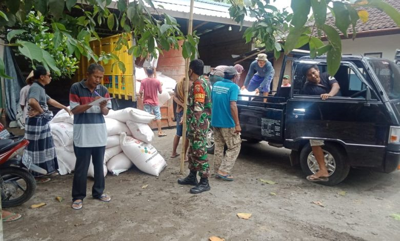 Pastikan Pupuk Subsidi Sampai ke Petani, Babinsa Pengenjek Kawal Pendistribusian