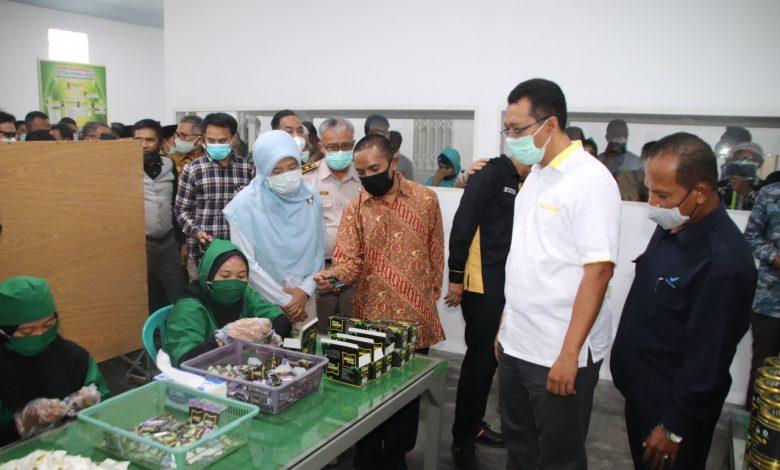 Zul-Rohmi Memilih Program Industrialisasi untuk Percepatan Pembangunan NTB