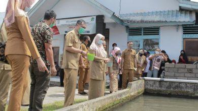 Photo of Balai Benih Ikan Didorong Menjadi Pusat Inkubasi Industrialisasi Perikanan Air Tawar di Wilayah NTB
