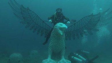 Photo of Coral Garden Lombok Diluncurkan sebagai Atraksi Kelautan dan Perikanan NTB