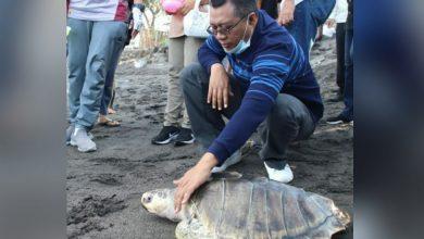 Photo of Seusai Bersihkan Pantai Mapak, Gubernur bersama Dinas Kelautan dan Perikanan NTB Jaga Kelestarian Ekosistem