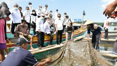 Photo of Menteri Kelautan dan Perikanan Jadikan NTB Pusat Budidaya Lobster Nasional