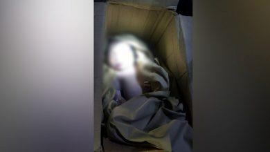 Photo of Rohani Berfikir ada Mie Instan Dalam Kardus di Jempong Baru Mataram, Ternyata Berisi Mayat Bayi